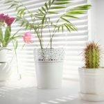 Dekoration von Fensterbänken – mit Vasen arbeiten