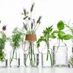 Welche Vase für welche Blume?
