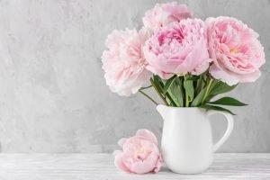 Welche Blumen zu welcher Jahreszeit?